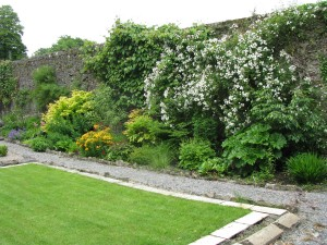 The Gardens Herbaceous Border  (8)