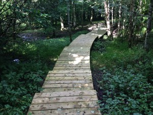 The Gardens Landscaping Boardwalk (4)