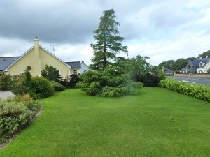 The Gardens Landscaping Herbaceous Borders (1)