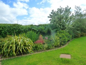 The Gardens Landscaping Herbaceous Borders (14)