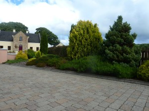 The Gardens Landscaping Herbaceous Borders (4)