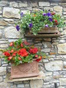 The Gardens Window Boxes (5)