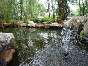 The gardens Landscaping rock pool water feature (10)