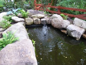 The gardens Landscaping rock pool water feature (2)