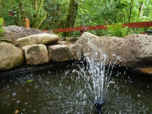 The gardens Landscaping rock pool water feature (6)