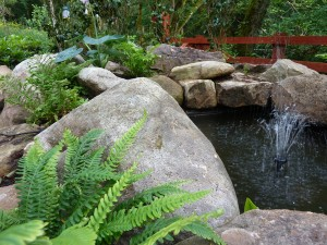 The gardens Landscaping rock pool water feature (9)